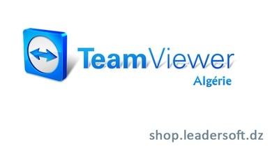 TeamViewer Licence Premium