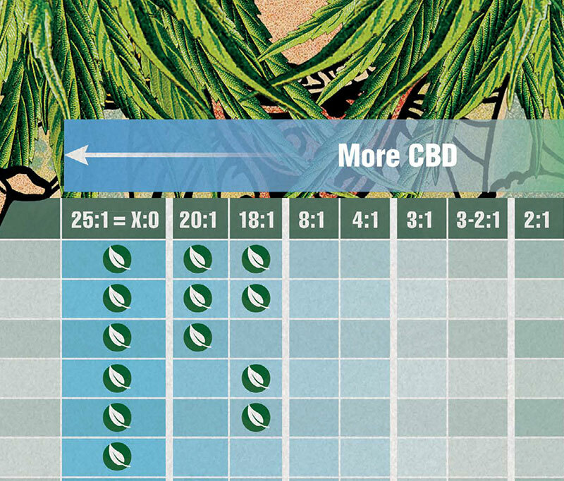 CBD:THC Ratio By Condition Poster