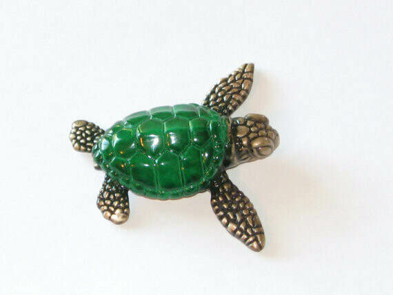 Bitsy Turtle Green