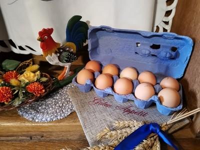 10er mittelgroße Eier M