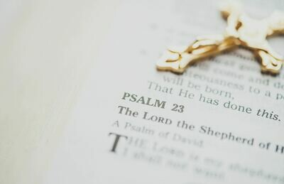 Psalm 23 Series:  I'm In the Shepherd's Care