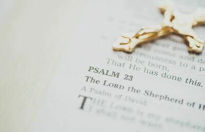 Psalm 23 Series:  God's Navigational System