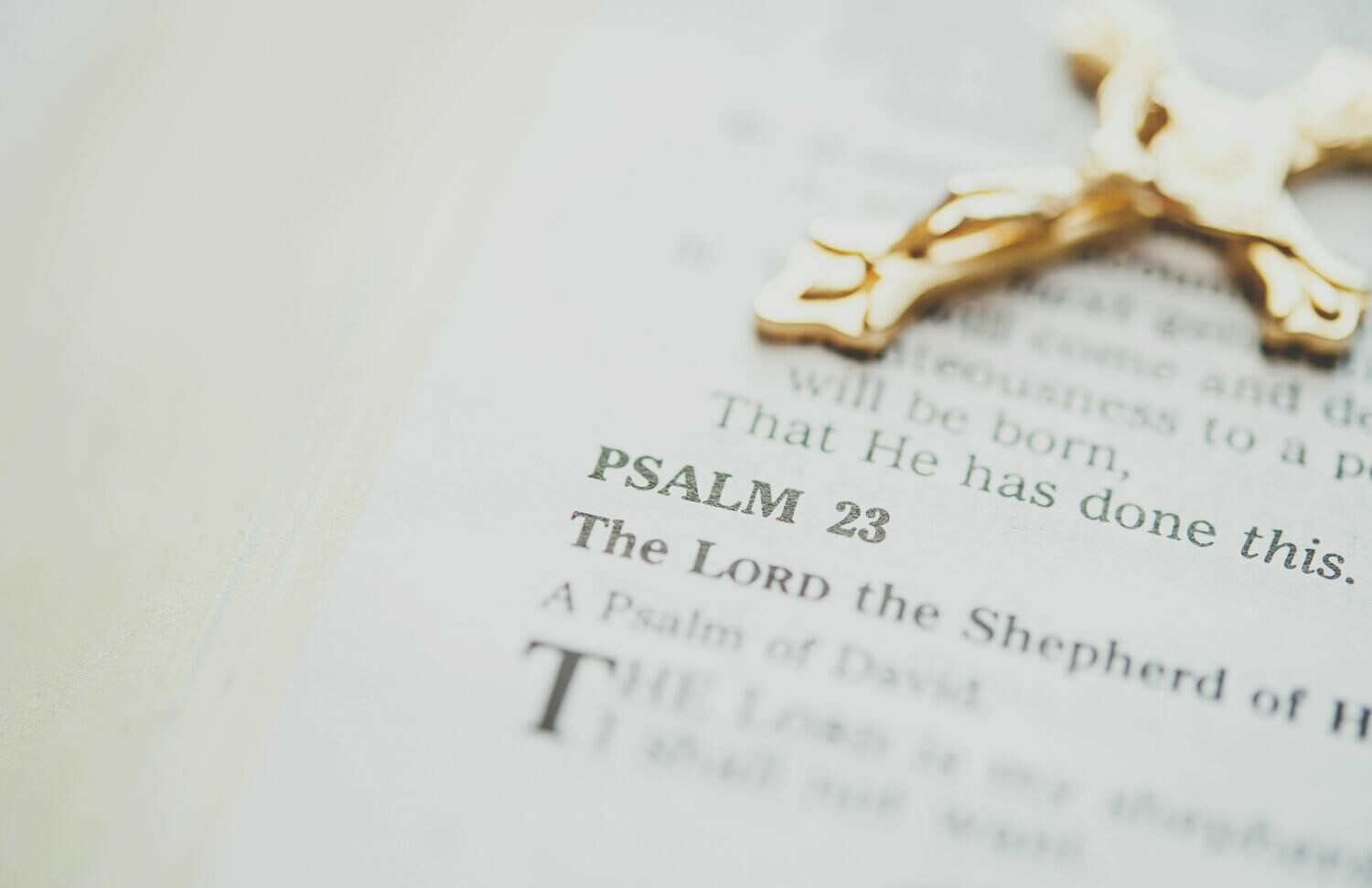 Psalm 23 Series:  Provisions In the Presence of Our Enemies