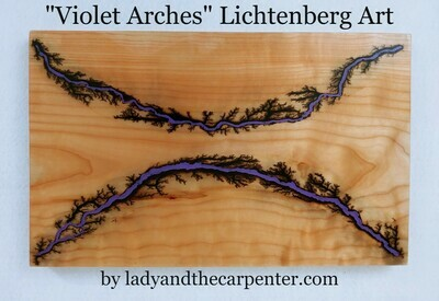 Lichtenberg Art