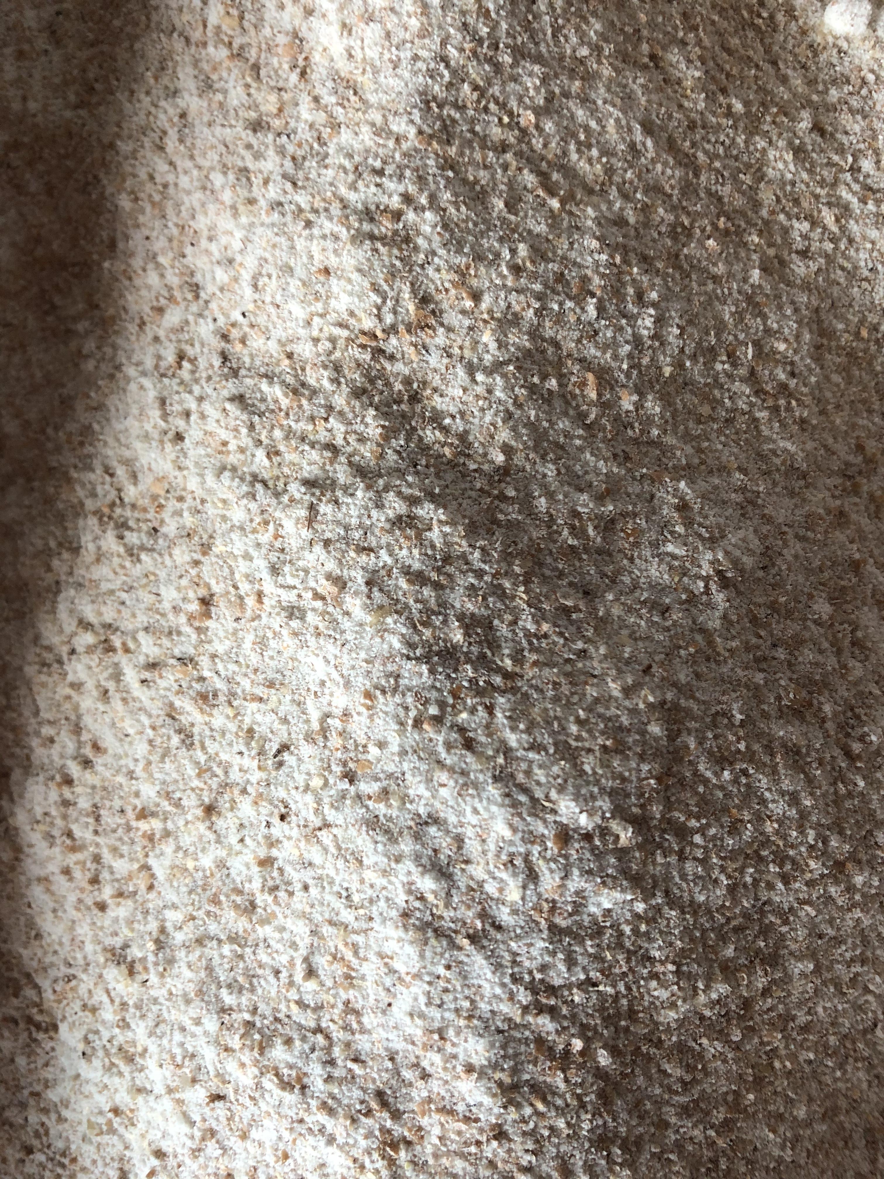 Farina integrale BIO di grano tenero