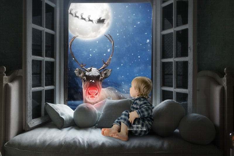 Christmas Window with Rudolph the Red Nosed Reindeer Digital Background