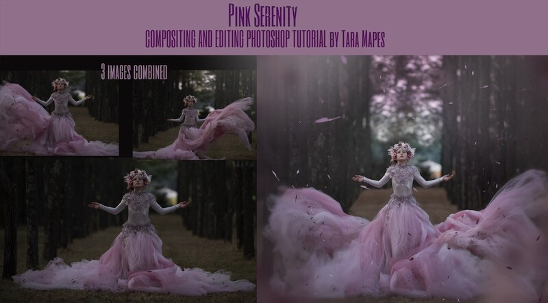 Pink Serenity Compositing and Editing Photoshop Tutorial by Tara Mapes