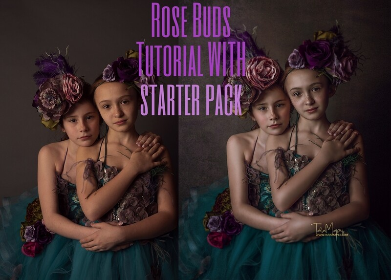Rose Buds Fine Art Painterly Photoshop Tutorial WITH STARTER PACK- Fine Art Tutorial by Tara Mapes