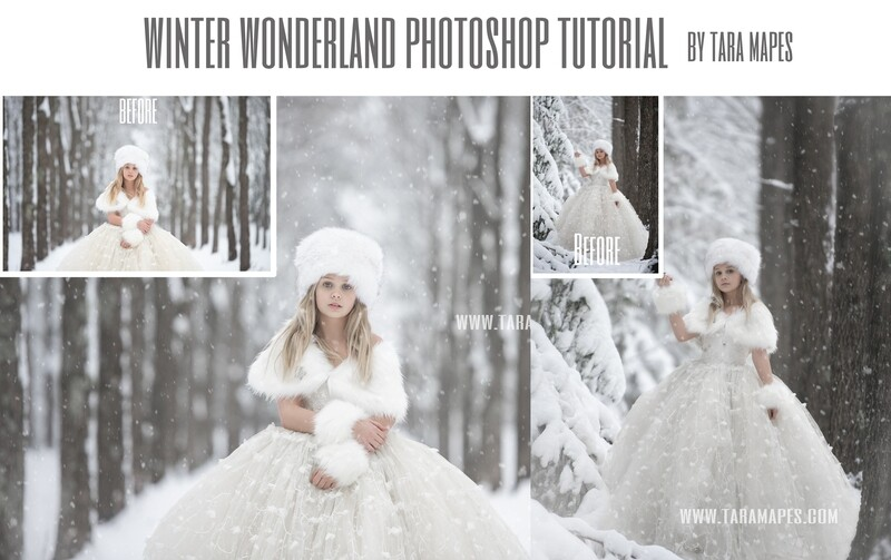Winter Wonderland (2 IMAGE EDITS) Fine Art Photoshop Tutorial by Tara Mapes