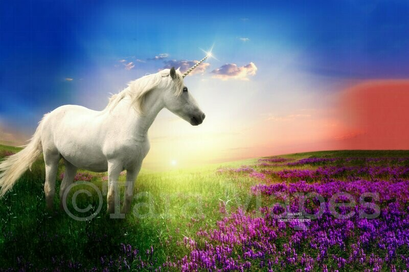 Unicorn in Field of Purple Flowers with Sun Creamy Digital Background Backdrop
