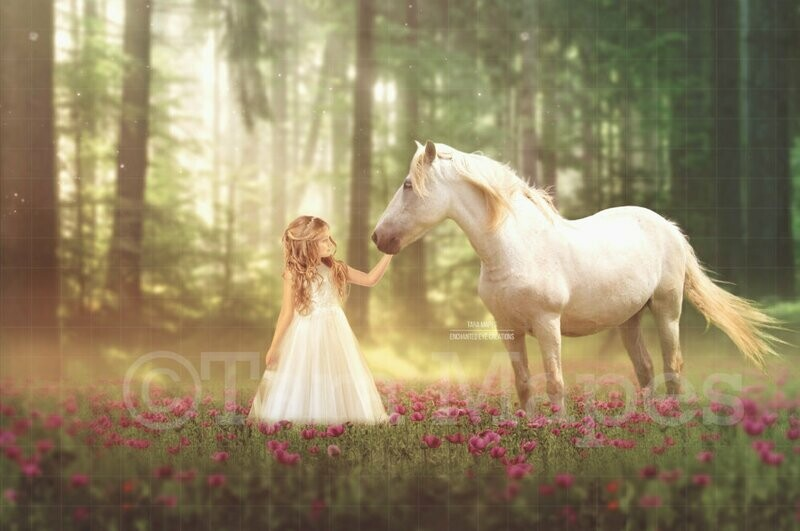 Horse in Field of Flowers by Forest Digital Background Backdrop
