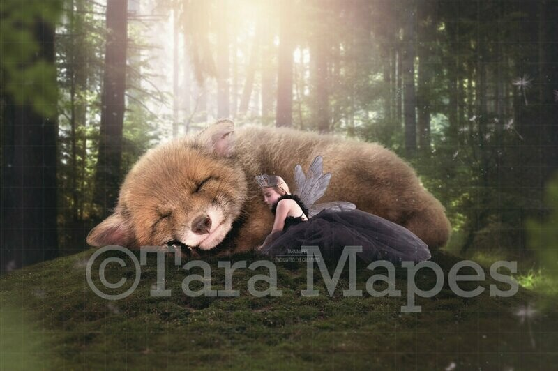 Baby Fox in Forest - Fairy Forest- Fox Digital Background Backdrop