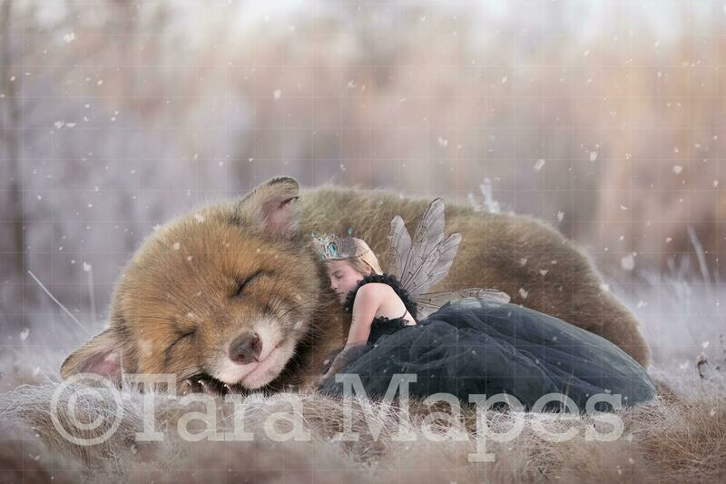 Baby Fox and Fairy Digital Background
