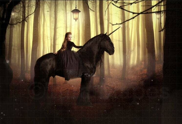 Black Unicorn in Dark Forest Digital Background