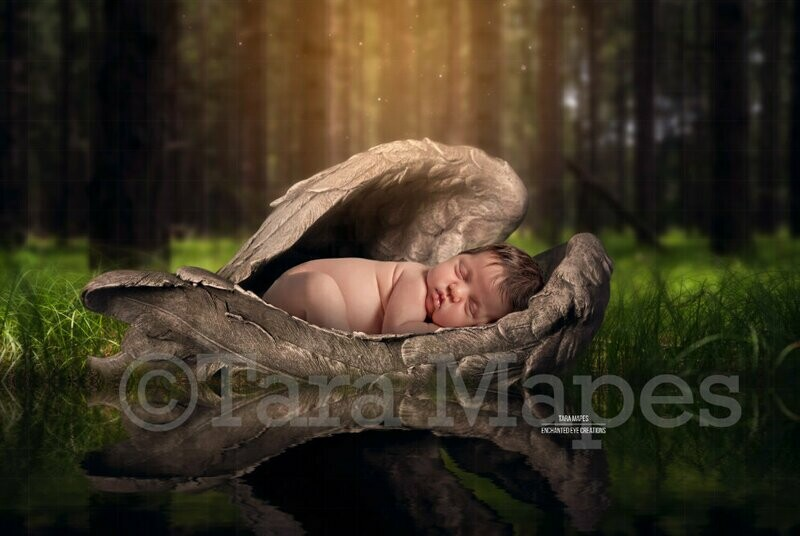 Heaven Sent Digital Background Forest Baby Fur Baby Newborn or Animal PSD Layered Digital Background / Backdrop