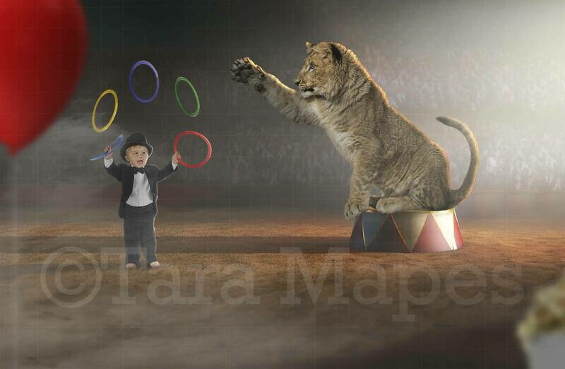 Circus Lion Cub Digital Background
