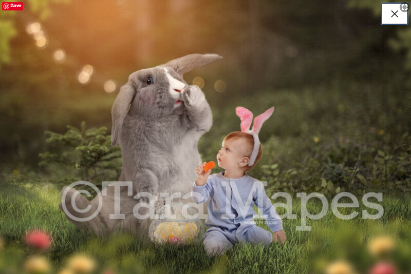 Funny Bunny in Creamy Forest - Rabbit in spring forest -Nature Forest Digital Background / Backdrop