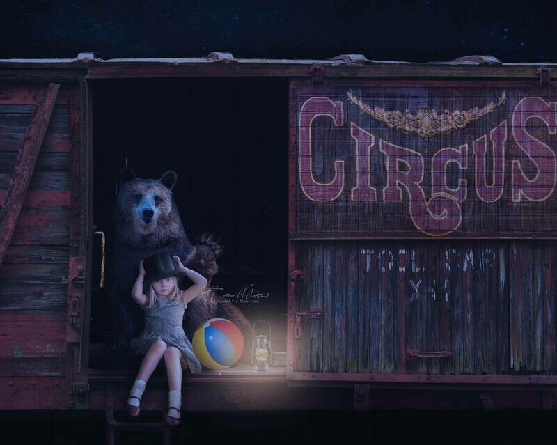 Circus Train with Bear Digital Background