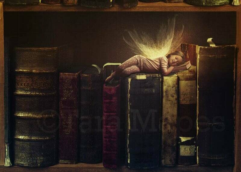 Fairy Sleeping on Book in Bookshelf Digital Background Backdrop Photoshop