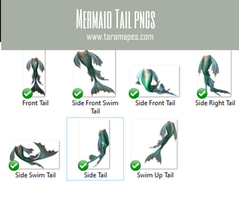 Mermaid Tail PNGS - 7 Pack Mermaid Tails - Mermaid Fin - PNG  overlay