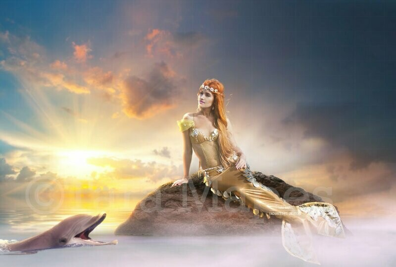 Mermaid Rock in Ocean Rock and Dolphin Digital Background Backdrop