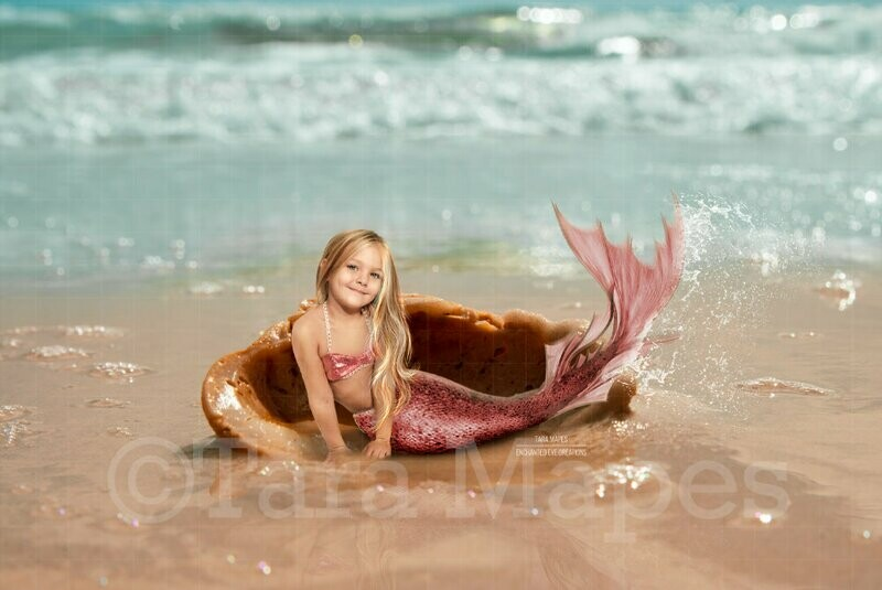 Shell on Beach - Mermaid Scene or Newborn Scene Digital Background Backdrop