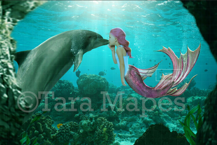 Mermaid and Dolphin Digital Background / Backdrop