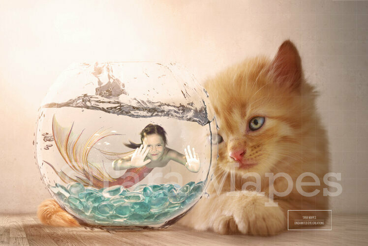 Mermaid in Fishbowl with Cat/Kitten Digital Background / Backdrop