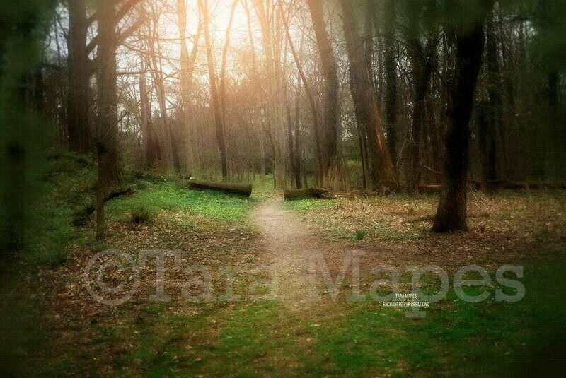 Magic Forest Path - Path in Forest Spring Digital Background Backdrop