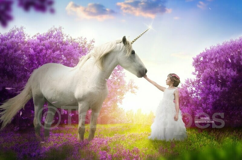 Unicorn in Cherry Blossoms Purple Flowers with Sun Creamy Digital Background Backdrop