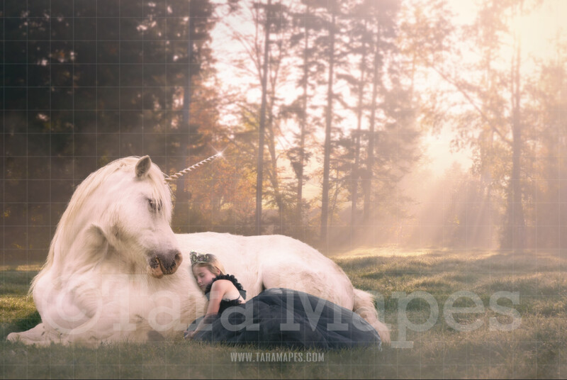Unicorn Laying in Field Digital Background