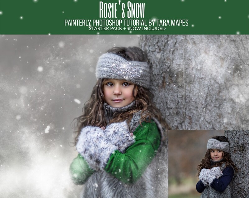 Rosie's Snow Painterly Editing + Compositing Photoshop Tutorial with STARTER PACK- Fine Art Tutorial by Tara Mapes