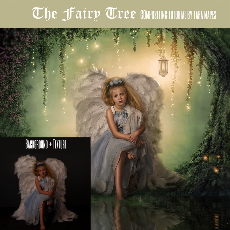 Fairy Tree Painterly Editing + Compositing Photoshop Tutorial Background Included