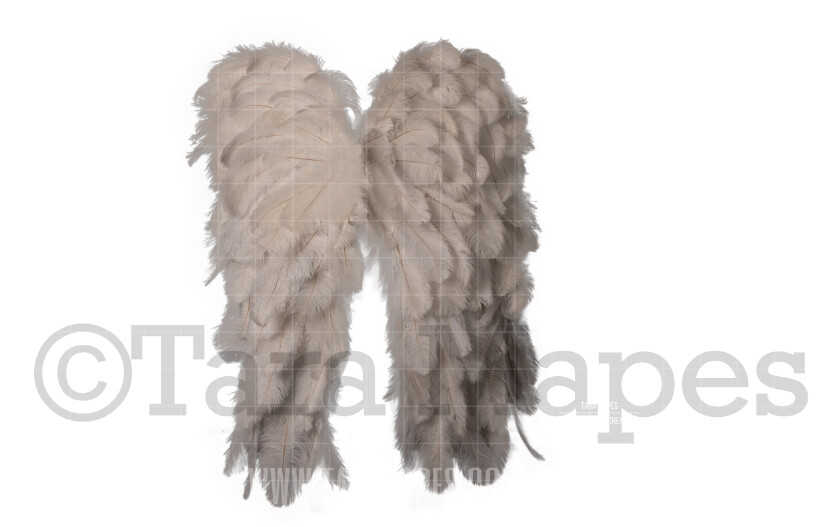 White Ostrich Feather Wings PNG Fairy Wing Digital Overlay - 3 Wings - Fairy Wing Overlay PNG - Fairy Wing Overlay - Fairy Wings- Digital Wing