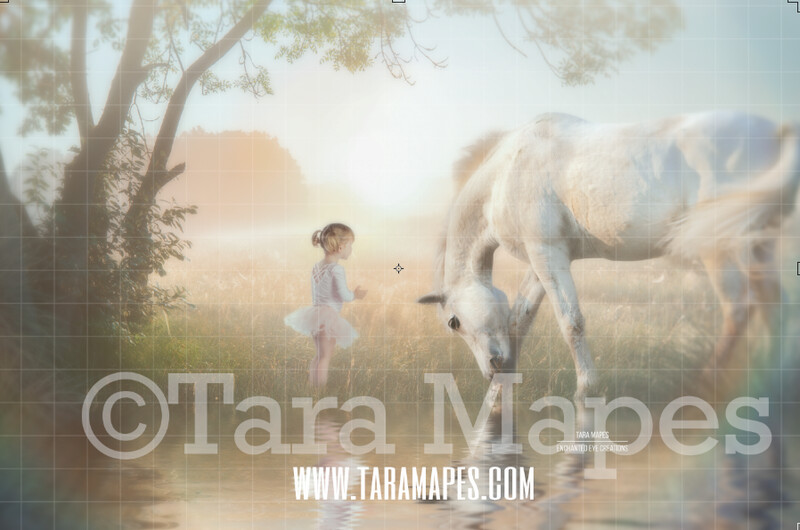 White Horse by Enchanted Tree by Pond Lake - Creamy Sunset Field by Pond - Magical Pastel Field Sunset  Photoshop Digital Background / Backdrop