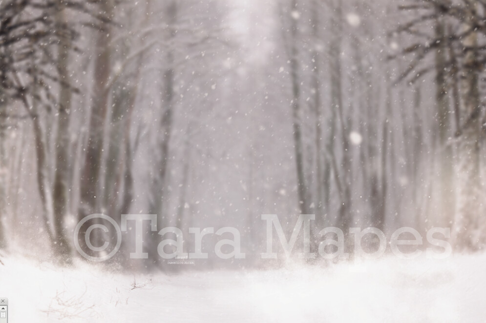 Snowy Scene Winter Digital Background Backdrop - Free Snow Overlay included