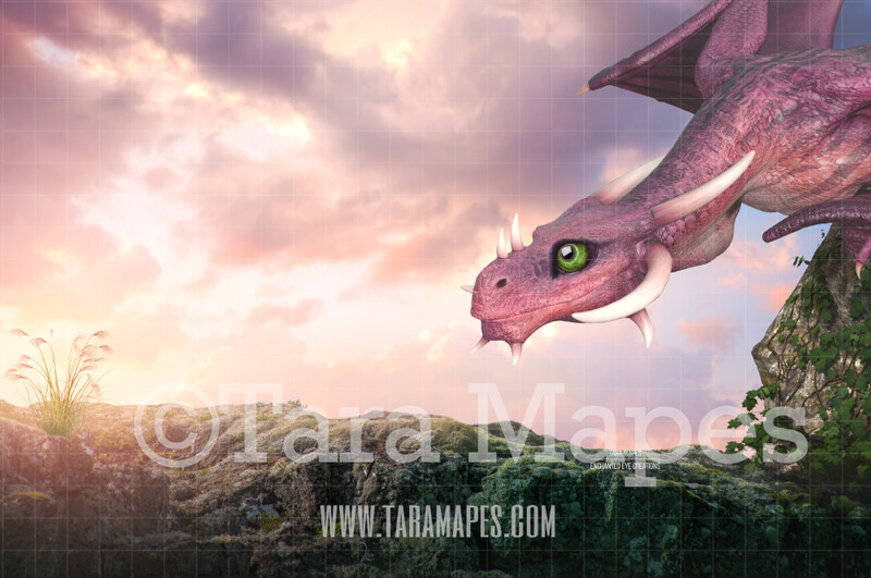 Nice Dragon on Rock - Sweet Dragon with Big Eyes Digital Background