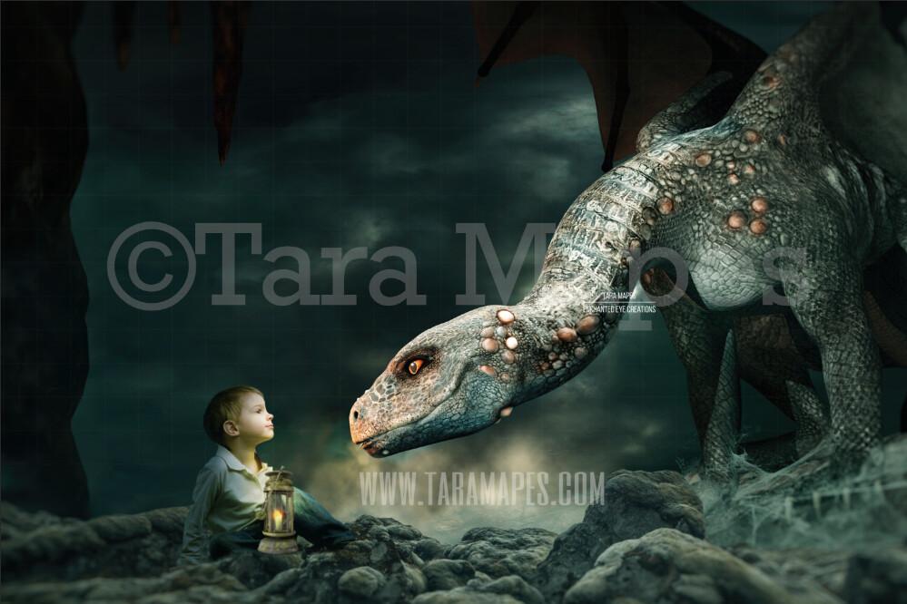 Nice Dragon on Rock - Sweet Smiling Dragon Digital Background