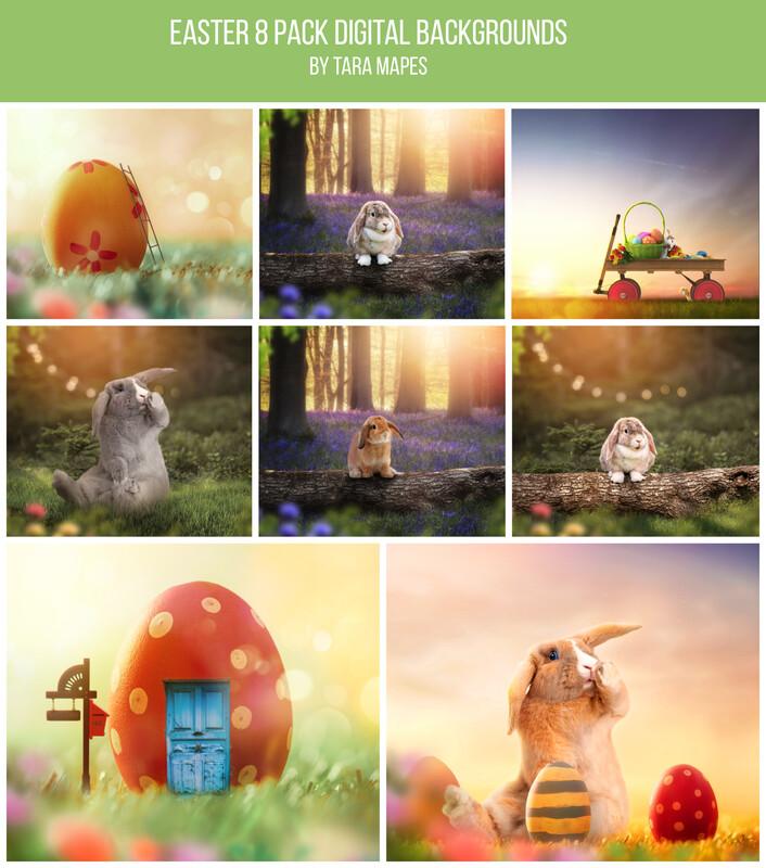 8 Pack Easter Digital Backgrounds - Easter Digital Backgrounds Backdrops