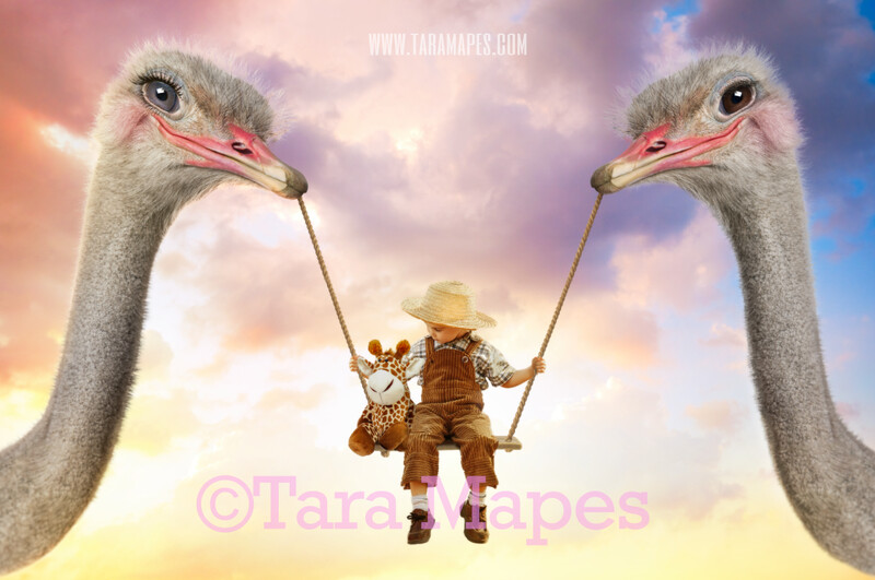 Ostrich Swing- Whimsical Pair of Ostriches - Ostrich Couple holding Swing - Digital Background - Ostrich in Whimsical Scene Digital Background