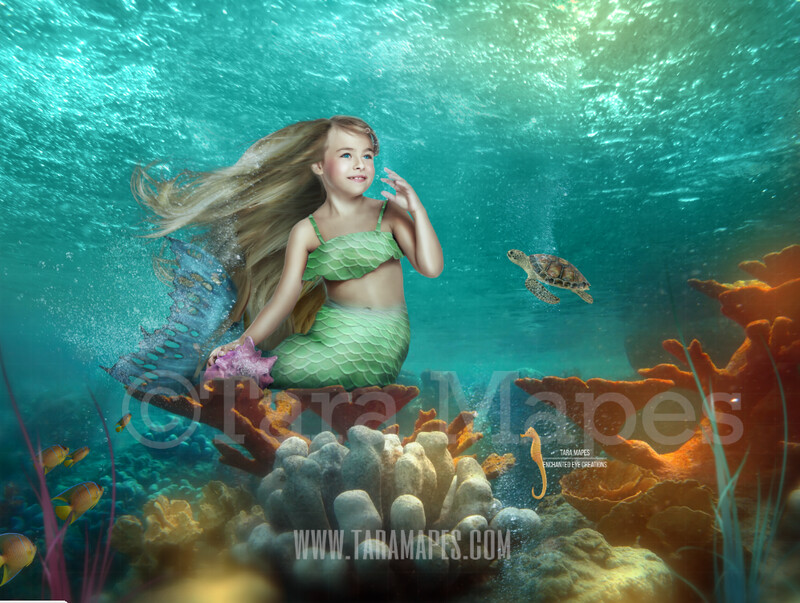 Mermaid Tail on Coral - Mermaid Scene Underwater in Ocean Layered PSD - Mermaid Scene with Sea Life Turtles Fish Seahorse- Whimsical Mermaid Scene Digital Background