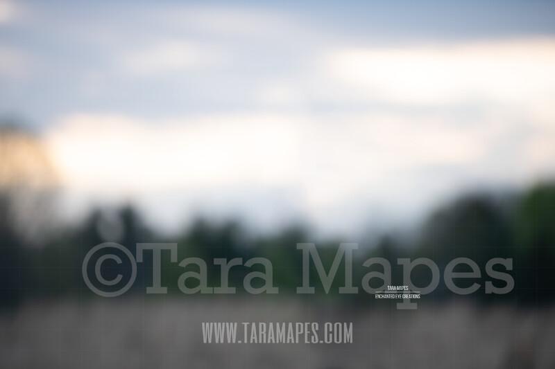 Blurred Field $1 Digital Background Backdrop by Tara Mapes
