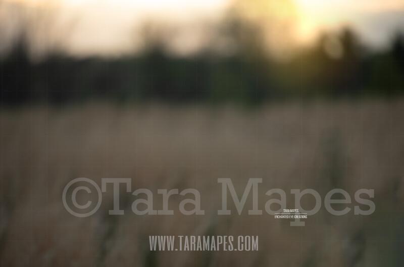 Blurred Field #3  $1 Digital Background Backdrop by Tara Mapes