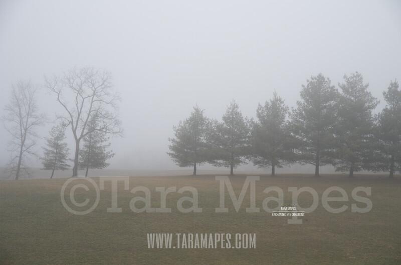 Foggy Green Pines $1 Digital Background Backdrop