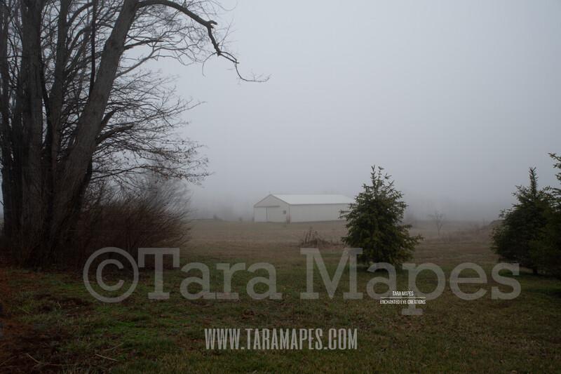 Foggy Trees 2  $1 Digital Background Backdrop