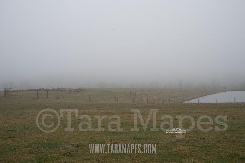 Foggy Green Pines 3 $1 Digital Background Backdrop