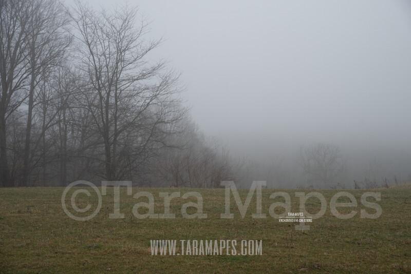Foggy Green Pines Trees 4  $1 Digital Background Backdrop