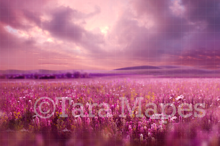 Pink Field of Flowers Digital Background