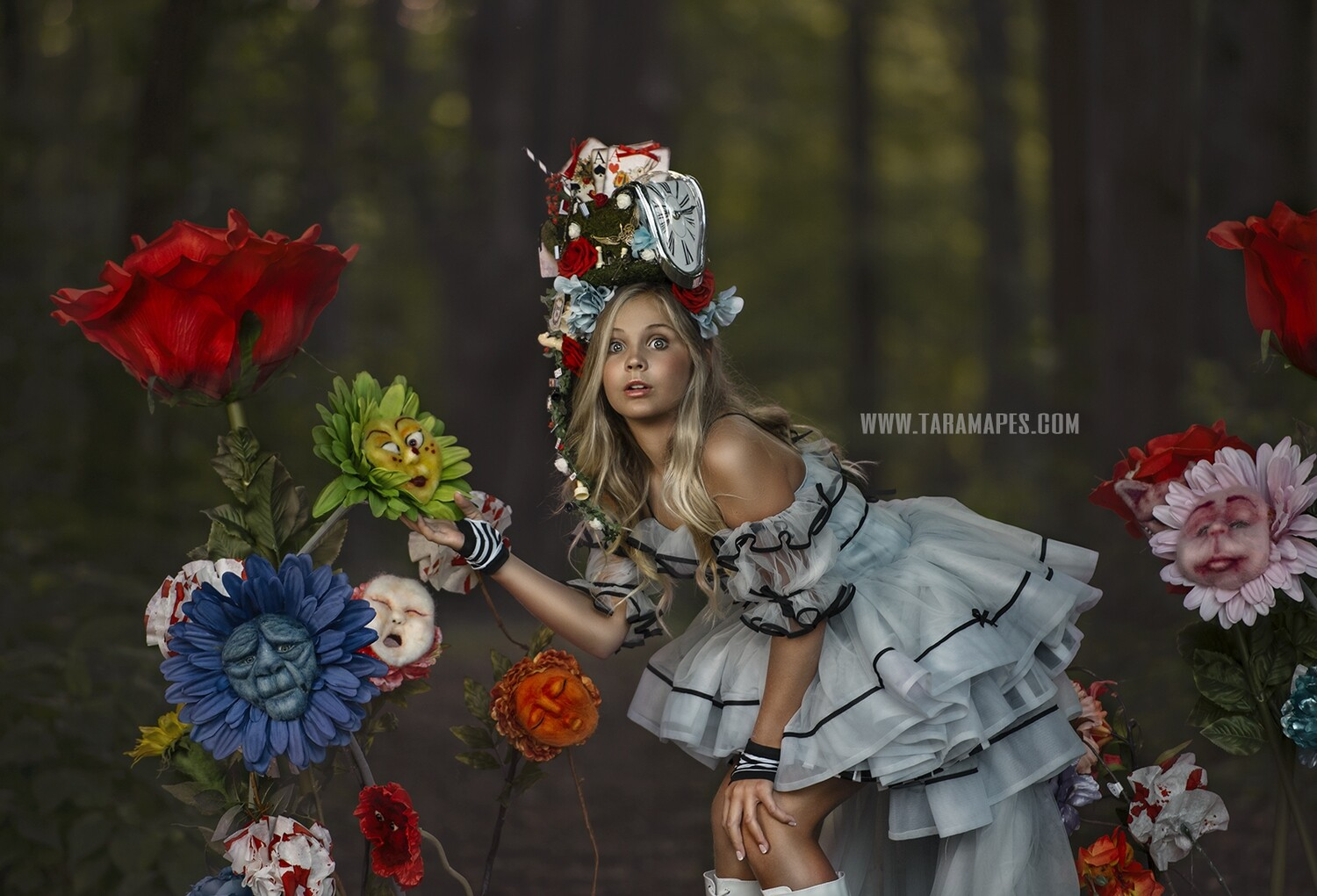 Alice in Wonderland Talking Flowers Digital Background Backdrop