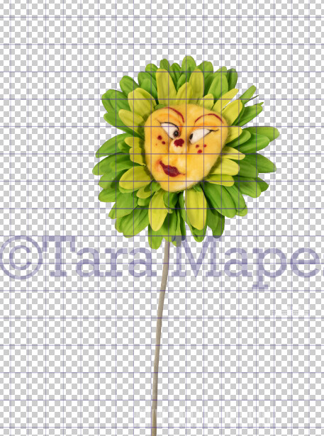 Talking Flower-  Green and Yellow Flower with Funny Face- Flower Overlay by Tara Mapes - Alice in Wonderland Inspired PNG - Digital Overlays by Tara Mapes Enchanted Eye Creations